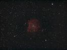 Affenkopfnebel (NGC 2174) im Ori