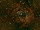 Rosettennebel (NGC 2244), im Mon