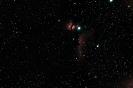 Flammennebel (NGC 2024) und Pferdekopfnebel (B33 vor IC 434) im Ori